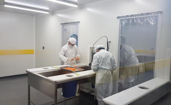 Rideau à lanières PVC dans une cuisine centrale